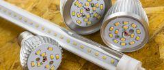 Verschiedene Light Emitting Diodes (LEDs).