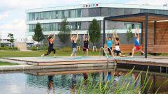 Dieses Bild zeigt Mitarbeiter, die im CODICO Central Park Yoga praktizieren.